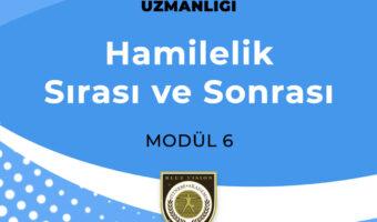 modul6 (2)